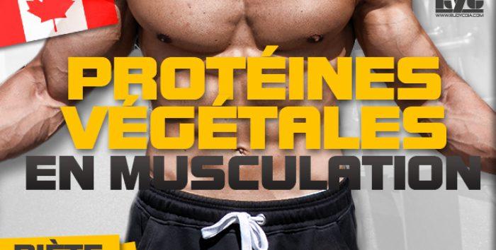 Faut-il compter les protéines végétales en musculation ?
