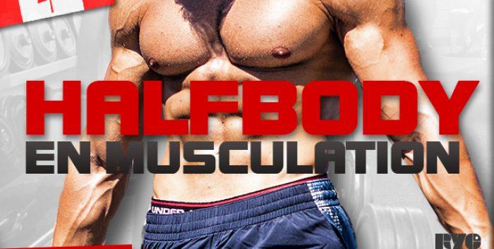 Qui doit faire un HalfBody en musculation ?
