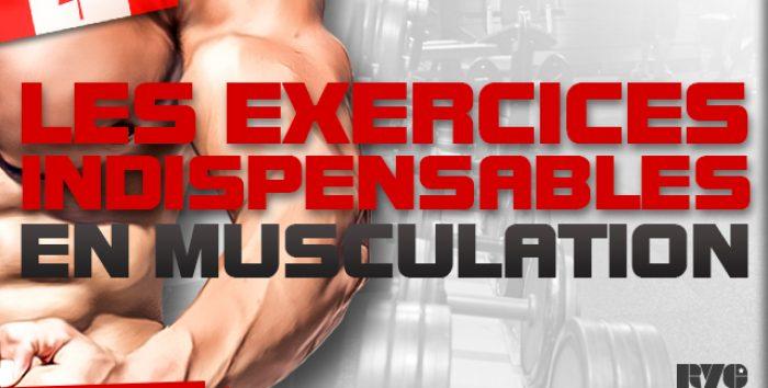 Les exercices obligatoires en musculation