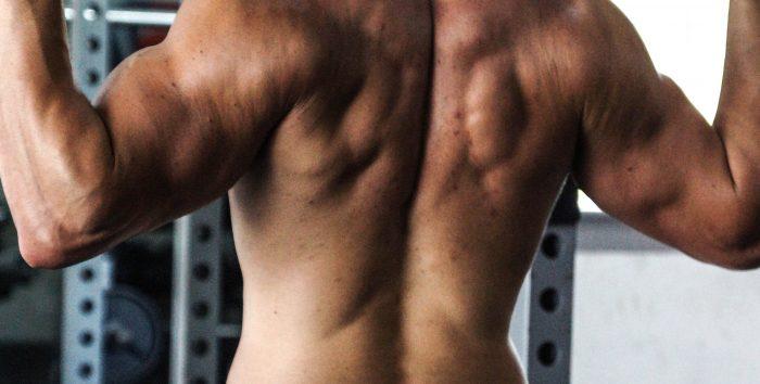 Comment accélérer sa récupération en musculation ?