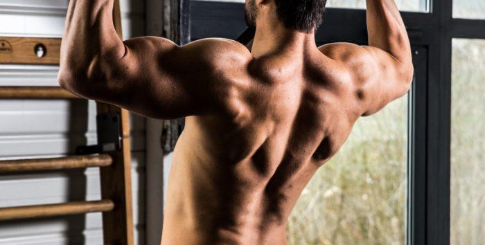 Fréquence vs Volume en en musculation